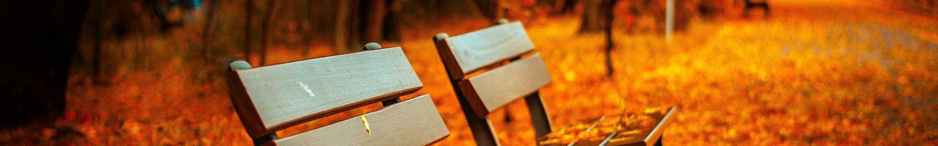 image-générique-automne