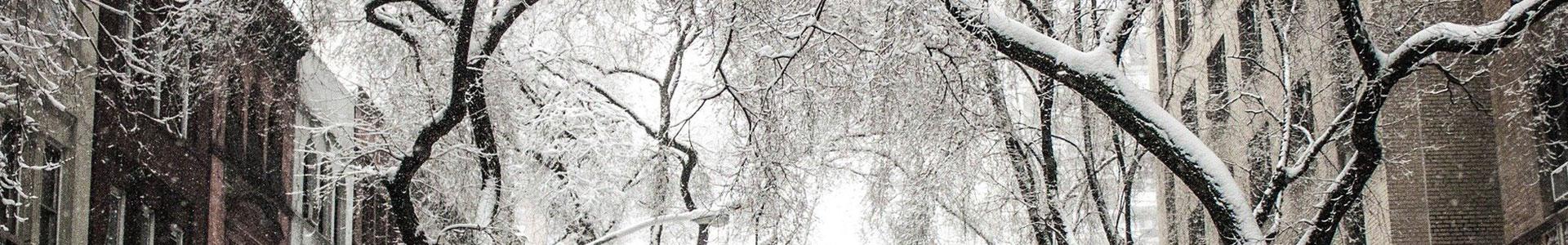 image-générique-hiver